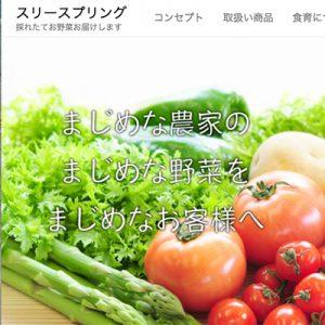 株式会社スリースプリング,新鮮野菜の直送・卸し売り